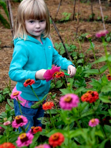 Kennadie, 3, gets ready to place a pinwheel at her grandmother's garden to cast her vote for favorite garden. Her grandmother, Livia Emde, who was a master gardener with OSU Extension passed away recently. OSU Extension celebrates 100 years with a celebration at the Master Gardener Demonstration Garden on East Main Street.