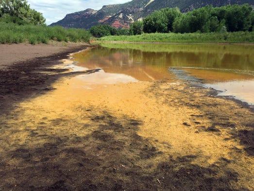 As the Animas River begins to recede, it reveals sludge