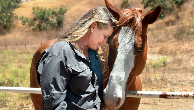 Stacy Hyatt, who lost her home when the Thomas Fire swept through the property she was renting in December, shares a moment with Brody, one of her four horses, on a quiet Wheeler Canyon property owned by a friend. Hyatt had been living in Summerland for several months until recently, when friend Sharon Lindsay invited her and her horses to live on her Wheeler Canyon property while Hyatt continues her search for a permanent property in the canyon.