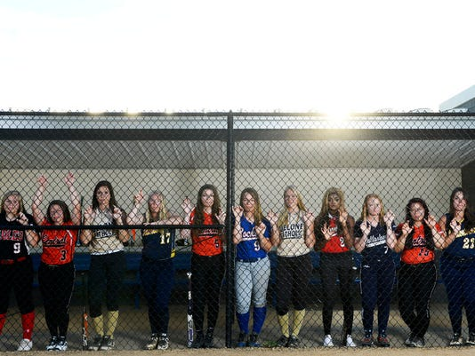 The GameTimePA.com YAIAA first-team softball all-stars are, from left: Dover's Natalie Cutright, Central York's Kayla Resh, Delone Catholic's Shelbee Holcomb, Littlestown's McKenzie Somers, Central York's Kelsey Wisner, Spring Grove's Hayley Norton, Delone Catholic's Katie Laughman, Susquehannock's Mallory Lebo, Dallastown's Haylee Anders, Central York's Briannah Dobson and Littlestown's Kaitlin Yealy.