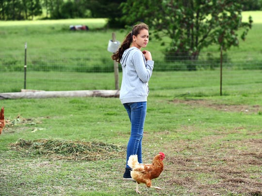 Peyton White on her family's farm in Trumansburg. Peyton, age 11, was afraid of the chickens when she first went to live with her grandparents but now cares for the chickens and many other farm animals. Peyton says she wants to be a veterinarian when she grows up.