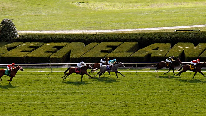 Thoroughbreds race past the grandstand on the turf course at Keeneland Race Course in Lexington, Ky., Sunday, Oct. 5, 2014. Racing continues at the historic track through Oct. 25. Keeneland will host its first-ever Breeders' Cup next year. (AP Photo/Garry Jones)