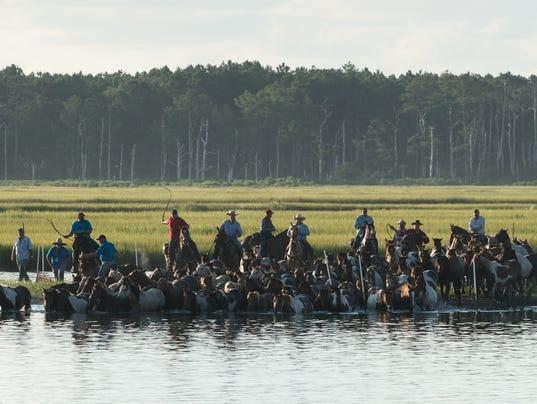 20170726rm-Pony-Swim-11.jpg