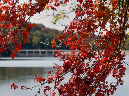 The dam in the background at Lake Williams in Springfield Township Sunday. Paul Kuehnel - Daily Record/Sunday News