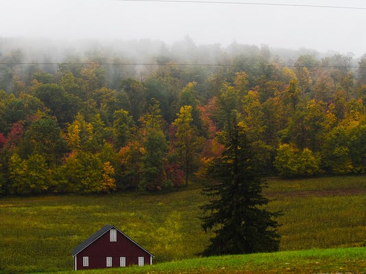 Deciduous trees line the countryside off of Chambersburg Road in Adams County on Oct. 14, 2014.