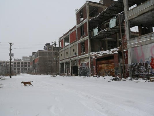 The Packard Plant on January 2, 2014. The deed for the property is now in the hands of Peruvian Developer