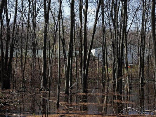 New Bedford Academy sits near a wooded wetland described by a member of the Bedford Township Planning Commission as 'a