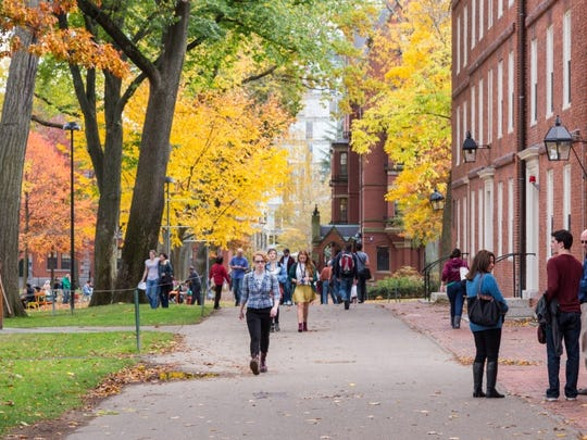 campus, walking, fall