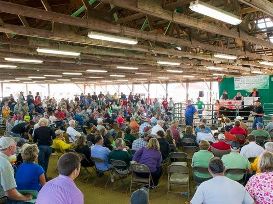 Calhoun County 4H auction on Friday_01.jpg