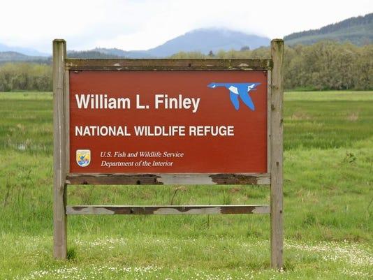 SAL0414-Finley elk