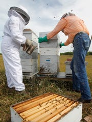 The South Texas Botanical Gardens & Nature Center, 8545 S. Staples St., will host a lecture on beekeeping basics from 10 a.m. to noon Saturday, June 10. Justin Hodge of Coastal Bend Beekeepers Association shares the importance of these garden pollinators, starting a home hive, and other resources for becoming a backyard beekeeper. Cost: Seminar included in general admission; members free. Information: 361-852-2100, www.stxbot.org.