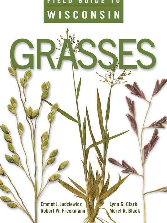 636275214861199494-Field-Guide-to-Grasses.jpg