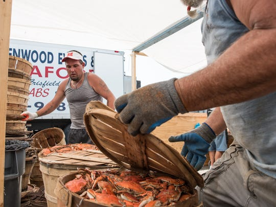 Bryan Scott Griffin, left, of Crisfield, works with Sam Slabaugh, of Delmar, to unload several bushels of crabs during the Crisfield Crab and Clam Bake on Wednesday, July 20, 2016.