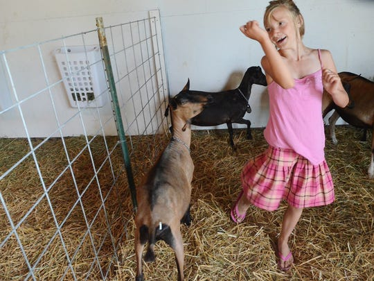 Marlena Burns dances with her goats at the 2013 Croswell Agricultural Fair.