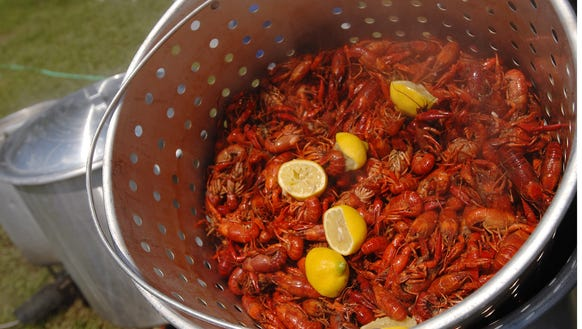 A steaming pot of crawfish is drained before serving