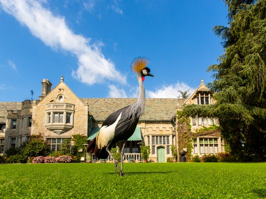 Hugh Hefner has lived in the home for four decades.