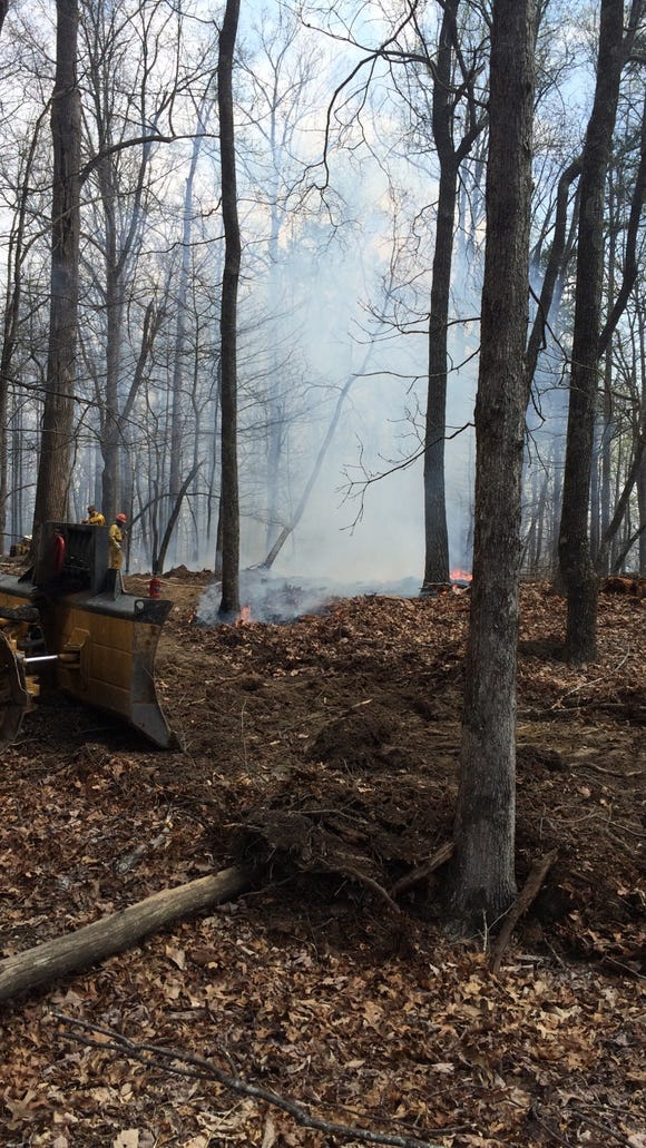 A forest fire burns earlier this spring. A wildfire