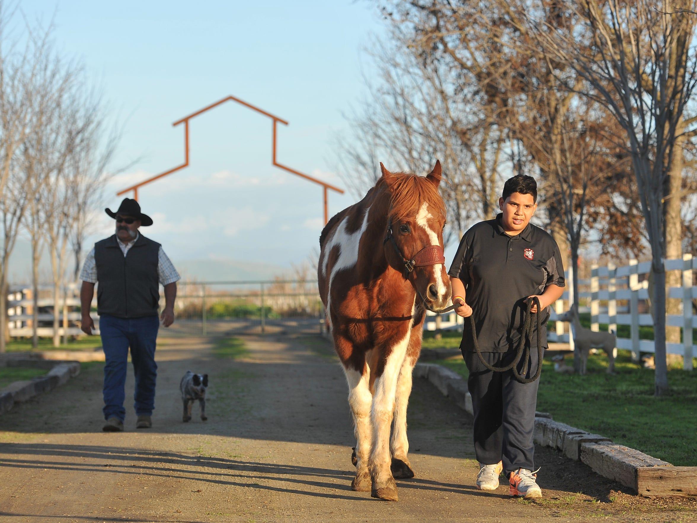 A.L.P.H.A. student Brigido Cruz of El Monte Middle School walks a horse at JM Ranch on Friday, January 15, 2016.