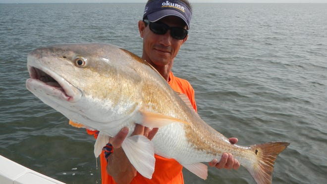 Sonny Schindler of Shore Thing Charters said said some of the best fishing for bull reds is during the hottest months of the year.