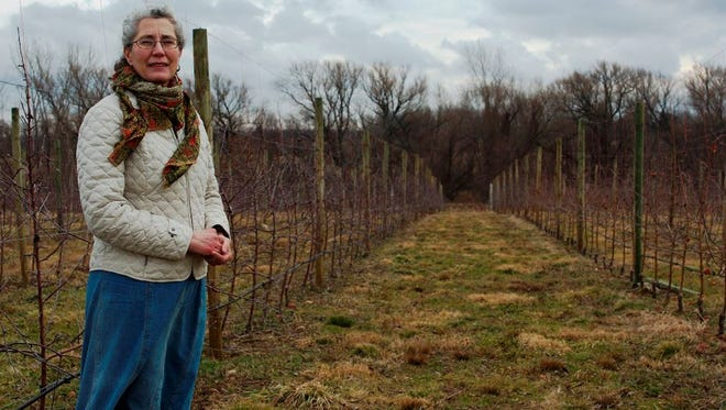 Amy Machamer co-owns fruit farm Hurd Orchards in Orleans County.