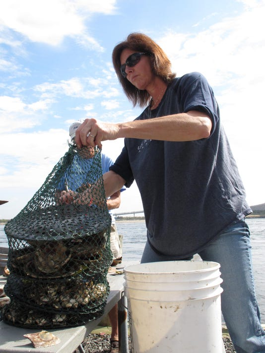 Oysters-Water Quality_Schu