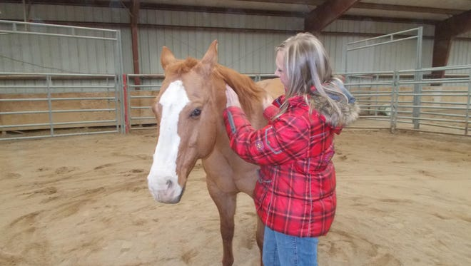 Jessica Hofer works with Tucker, a 15-year-old quarter horse whose injury keeps him from working as a cutting horse. Tucker is part of Rocky Mountain Treatment Center's equine therapy program, the only one of its kind in Montana used in addiction therapy.