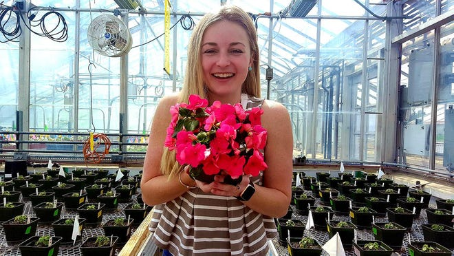 Crysta Harris, '19G, researched the viability of using pine wood fiber in containerized plant production while she was a student at the University of New Hampshire.