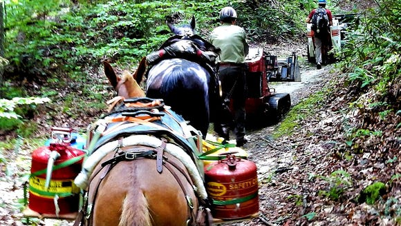 The Backcountry Horsemen will help volunteers at Pisgah Pride Day April 27, 2019, by packing in heavy trail work equipment.