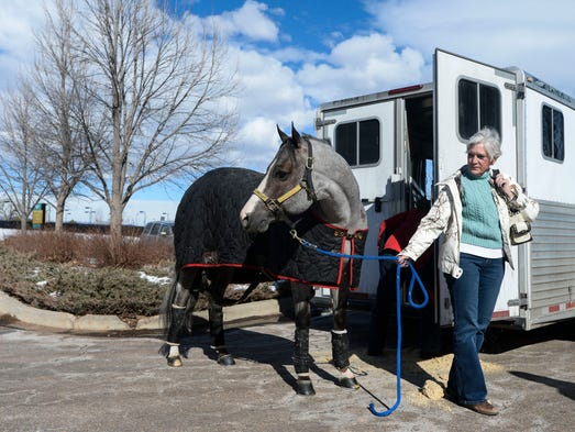 Diana Davidson leads her horse My Vital Valentine from