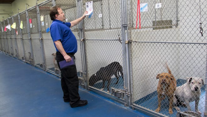 John Robinson, Division Manager /Animal Cruelty Investigator of the Escambia County Animal Services, reviews intake information in the holding area of the Animal Shelter in Pensacola on Thursday, Dec. 29, 2016.  Dogs are held in this area to be processed when they arrive at the facility and are evaluated for safety among other factors.