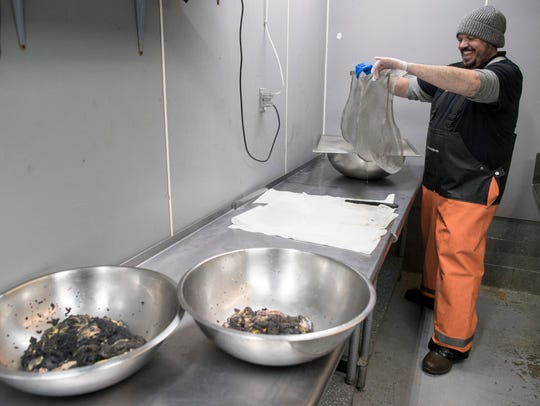 David Fields, the owner and operator at the Lake City Fresh Fish Market, cleans paddle fish caviar.