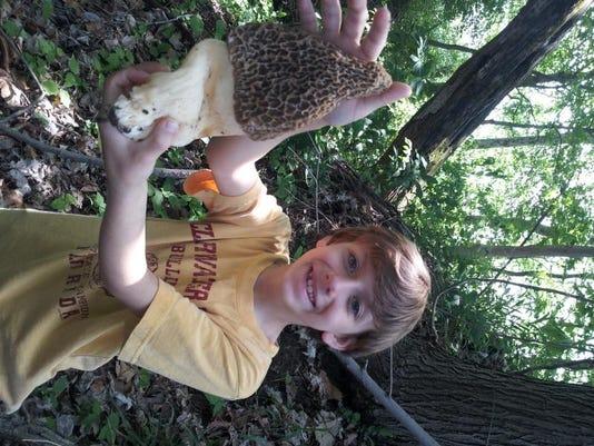 -mushroom.jpg_20140515.jpg