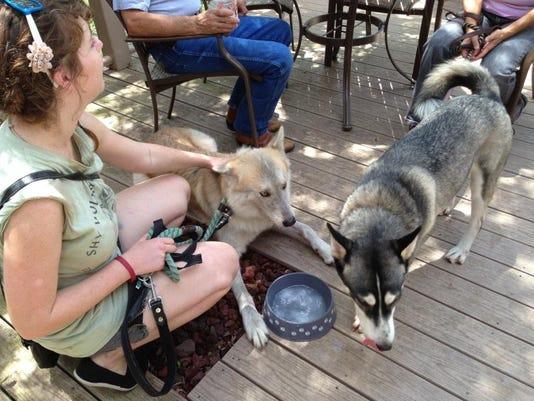 Phoenix the wolf-dog tries to beat the heat with companion Bobo the husky. L.JPG