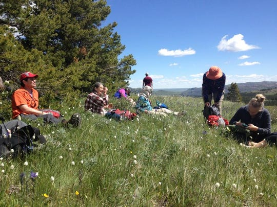 Hikers pause for lunch near Hall Creek in the Badger-Two Medicine area