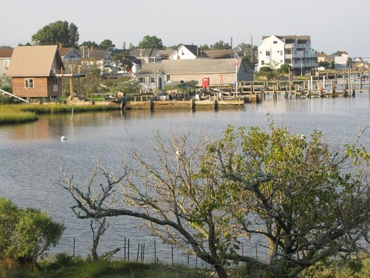 Chincoteague 1.jpg