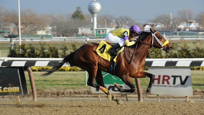 Uncle Sigh wins an Aqueduct maiden race by 14½ lengths.