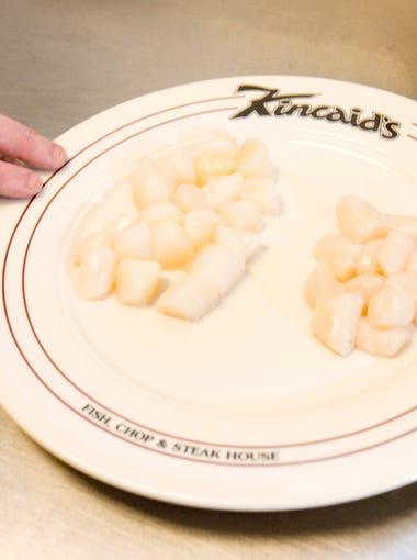 Bay scallops (left on plate) are found mainly in the