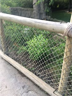 A new barrier has been installed at the Cincinnati Zoo's gorilla exhibit. The exhibit, which has been closed since a gorilla was killed to protect a child who fell in, will reopen Tuesday, June 7, 2016.