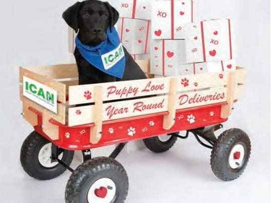 Puppies will deliver valentines to your sweetheart, raising money for Indiana Canine Assistance Network.