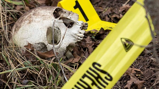 FILE - In this Feb. 6, 2015, file photo, an evidence marker sits next to a human skull as Davis County search and rescue members and crime scene investigators search a hillside, for more evidence in Fruit Heights, Utah. More police departments are amassing their own DNA databases, a move critics say is a way around stringent regulations governing state crime labs and the national DNA database.