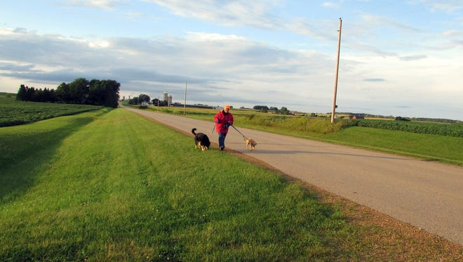 Sunny and Jade walk columnist Susan Manzke along a quiet country road.