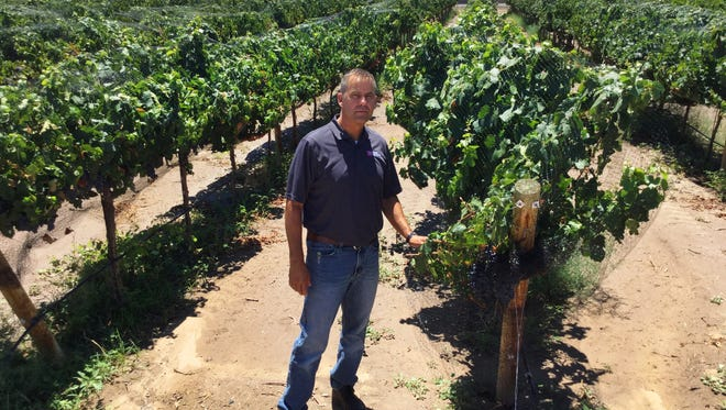 Gill Giese joined New Mexico State University July 3 as the Extension viticulture specialist.