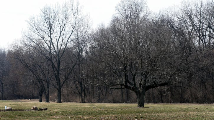 Redesign monument plan to preserve cemetery's trees