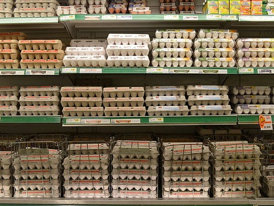 egg choices.JPG