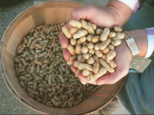 1126 nuts.jpg