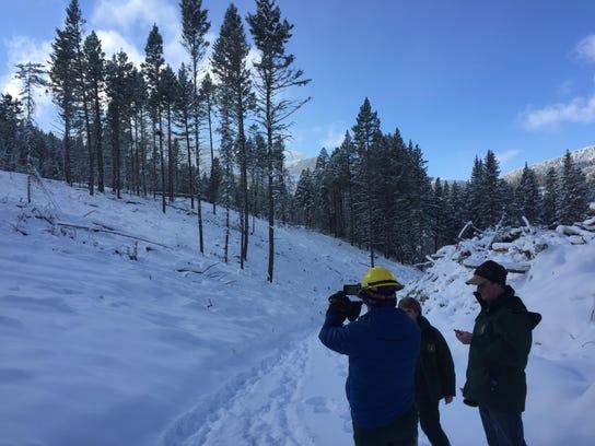 -logging area thinned.jpg_20170216.jpg