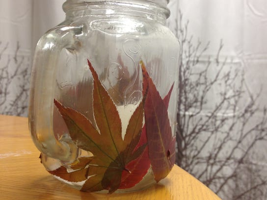How Can I Preserve Leaves And Retain Their Natural Color