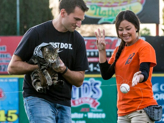 """There was a failed attempt to have Tara """"throw"""" the pitch using a baseball attached to a fishing line.  Tara might have been nervous, so Ryan Triantafilo helped the cat throw the pitch as he held her in his arms at Sam Lynn Ballpark Tuesday night May 20, 2014 in Bakersfield. (AP Photo/The Bakersfield Californian, Nick Ellis)"""