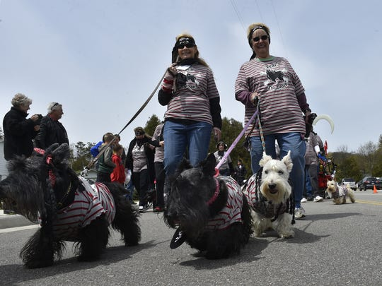 Candy Keeler of Chesterfield, Mo., left, and Shari Goodfield, of Springfield, Mo., march with their Scottish terriers in the 2017 Parade of Scots in Baileys Harbor.