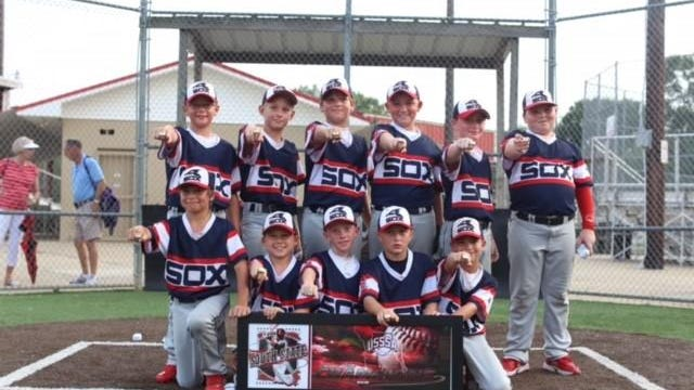 Members of the West Monroe Sox 10U team pose after winning the USSSA state tournament.